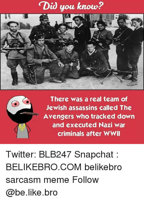 executions: Did you know?  There was a real team of  Jewish assassins called The  Avengers who tracked down  and executed Nazi war  criminals after WWII Twitter: BLB247 Snapchat : BELIKEBRO.COM belikebro sarcasm meme Follow @be.like.bro