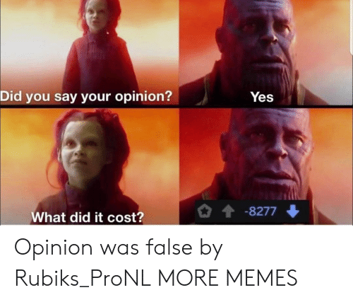 What Did It: Did you say your opinion?  Yes  -8277  What did it cost? Opinion was false by Rubiks_ProNL MORE MEMES