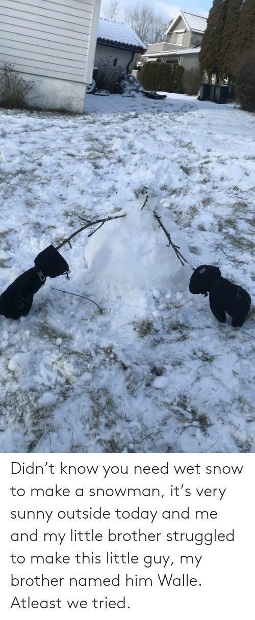 walle: Didn't know you need wet snow to make a snowman, it's very sunny outside today and me and my little brother struggled to make this little guy, my brother named him Walle. Atleast we tried.