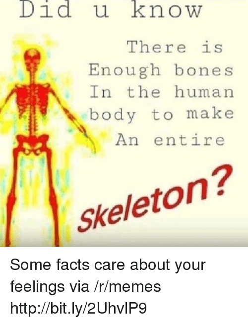 Bones, Facts, and Memes: Didu knowW  There is  Enough bones  In the human  body to make  An entire  Skeleton? Some facts care about your feelings via /r/memes http://bit.ly/2UhvlP9