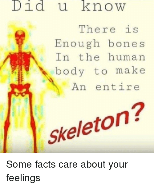 Bones, Facts, and Human: Didu knowW  There is  Enough bones  In the human  body to make  An entire  Skeleton? Some facts care about your feelings