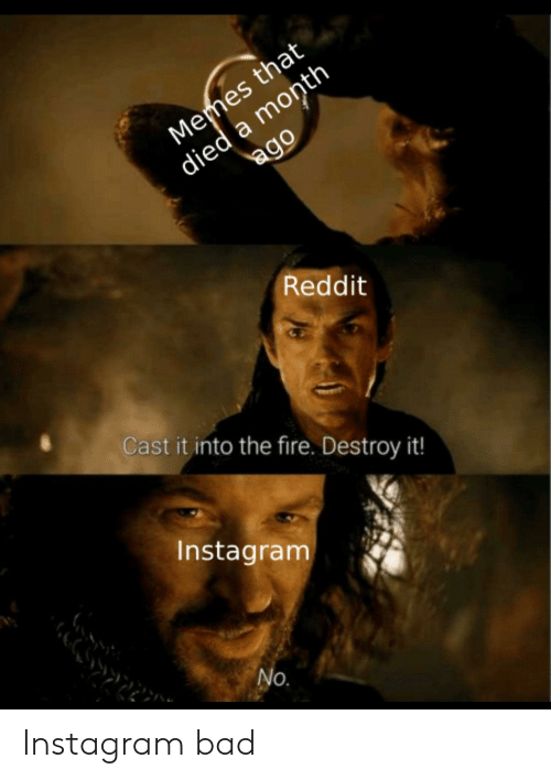 Bad, Fire, and Instagram: died a month  ago  Memes that  Reddit  Cast it into the fire. Destroy it!  Instagram  No. Instagram bad