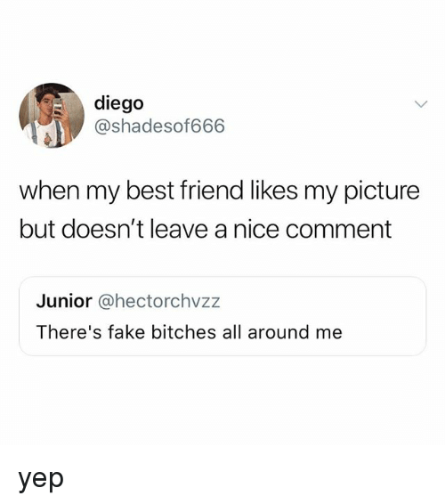 Best Friend, Fake, and Best: diego  @shadesof666  when my best friend likes my picture  but doesn't leave a nice comment  Junior @@hectorchvzz  There's fake bitches all around me yep