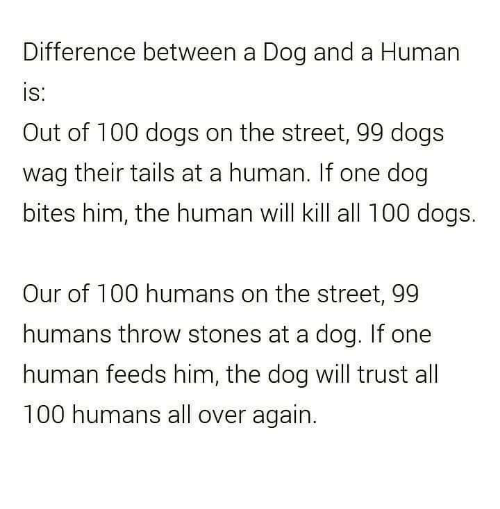 Dog Bite: Difference between a Dog and a Human  IS  Out of 100 dogs on the street, 99 dogs  wag their tails at a human. If one dog  bites him, the human will kill all 100 dogs.  Our of 100 humans on the street, 99  humans throw stones at a dog. If one  human feeds him, the dog will trust all  100 humans all over again.