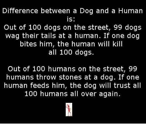 Dog Bite: Difference between a Dog and a Human  IS  Out of 100 dogs on the street, 99 dogs  wag their tails at a human. If one dog  bites him, the human will kill  all 100 dogs.  Out of 100 humans on the street, 99  humans throw stones at a dog. If one  human feeds him, the dog will trust all  100 humans all over again.