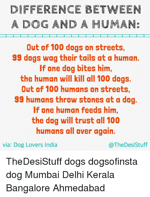 Dog Bite: DIFFERENCE BETWEEN  A DOG AND A HUMANE  Out of 100 dogs on streets,  99 dogs wag their tails at a human.  If one dog bites him,  the human will kill all 100 dogs.  Out of 100 humans on streets,  99 humans throw stones at a dog  If one human feeds him,  the dog will trust all 100  humans all over again.  via: Dog Lovers India  @The Desi Stuff TheDesiStuff dogs dogsofinsta dog Mumbai Delhi Kerala Bangalore Ahmedabad