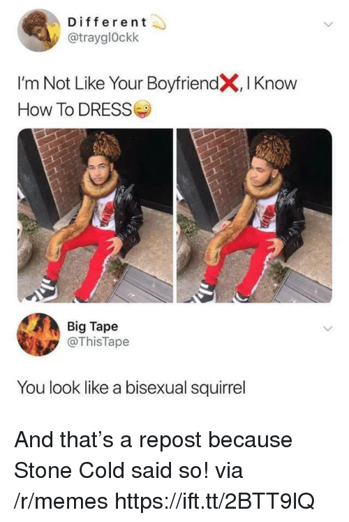 Memes, Dress, and How To: Different  @trayglOckk  I'm Not Like Your BoyfriendX, I Knoww  How To DRESS  Big Tape  @ThisTape  You look like a bisexual squirrel And that's a repost because Stone Cold said so! via /r/memes https://ift.tt/2BTT9lQ
