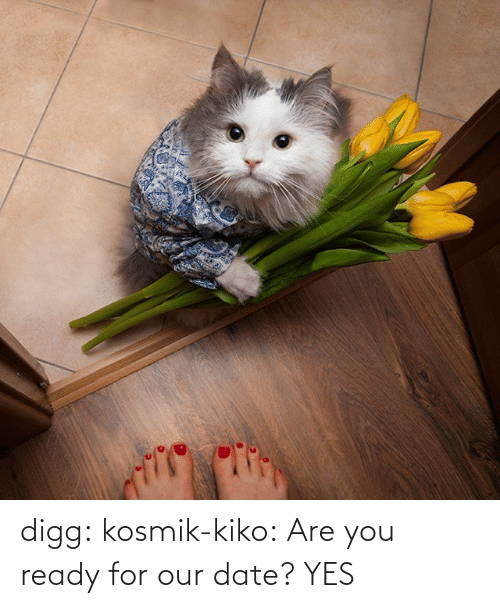 You Ready: digg:  kosmik-kiko:  Are you ready for our date?  YES