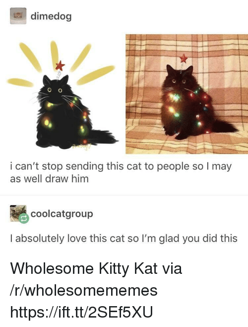 Love, Wholesome, and Cat: dimedog  i can't stop sending this cat to people so I may  as well draw him  颺coolcatgroup  I absolutely love this cat so I'm glad you did this Wholesome Kitty Kat via /r/wholesomememes https://ift.tt/2SEf5XU