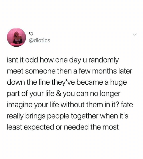 Funny, Life, and Fate: @diotics  isnt it odd how one day u randomly  meet someone then a few months later  down the line they've became a huge  part of your life & you can no longer  imagine your life without them in it? fate  really brings people together when it's  least expected or needed the most