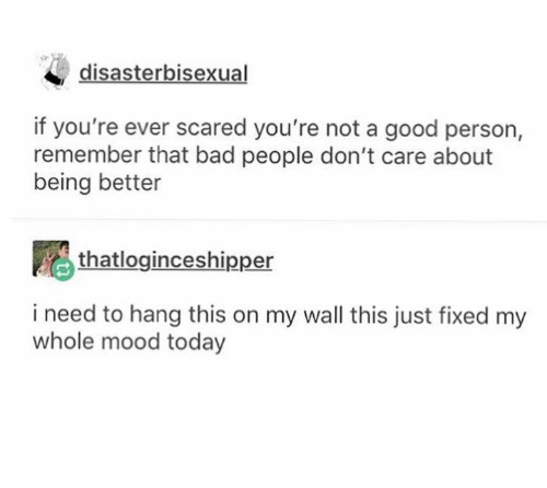 Bad, Mood, and Good: disasterbisexual  if you're ever scared you're not a good person,  remember that bad people don't care about  being better  thatloginceshipper  i need to hang this on my wall this just fixed my  whole mood today
