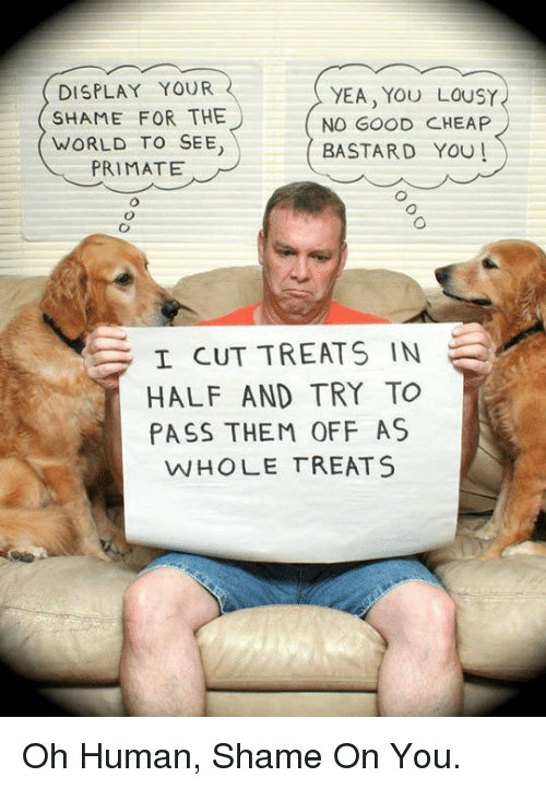lousy: DISPLAY YOUR  SHAME FOR THE  WORLD TO SEE  PRIMATE  YEA, YOU LOUSY  NO GOOD CHEAP  BASTARD YOU!  I CUT TREATS IN  HALF AND TRY TO  PASS THEM OFF AS  WHOLE TREATS <p>Oh Human, Shame On You.</p>