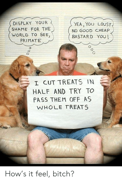 Good, World, and How: DISPLAY YOUR  SHAME FOR THE  WORLD TO SEE  PRIMATE  YEA, YOU LOUSY  NO GOOD CHEAP  BASTARD YOU  I CUT TREATS IN  HALF AND TRY TO  PASS THEM OFF AS  WHOLE TREATS How's it feel, bitch?