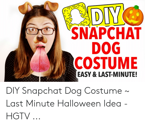 Halloween, Snapchat, and Hgtv: DIY  SNAPCHAT  DOG  COSTUME  EASY & LAST-MINUTE!  N: DIY Snapchat Dog Costume ~ Last Minute Halloween Idea - HGTV ...