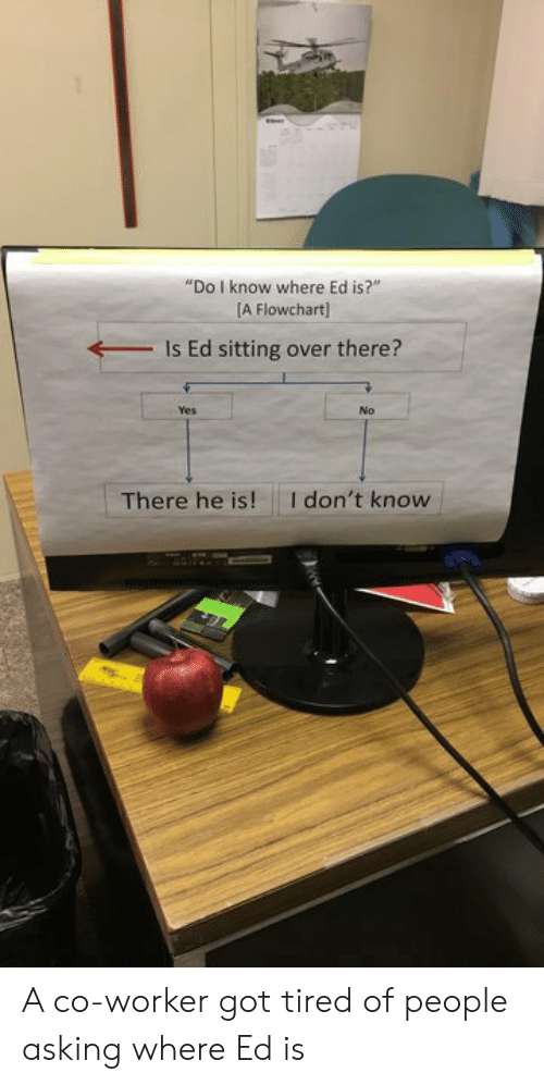 "Asking, Got, and Yes: ""Do I know where Ed is?""  A Flowchart]  Is Ed sitting over there?  Yes  No  I don't know  There he is! A co-worker got tired of people asking where Ed is"