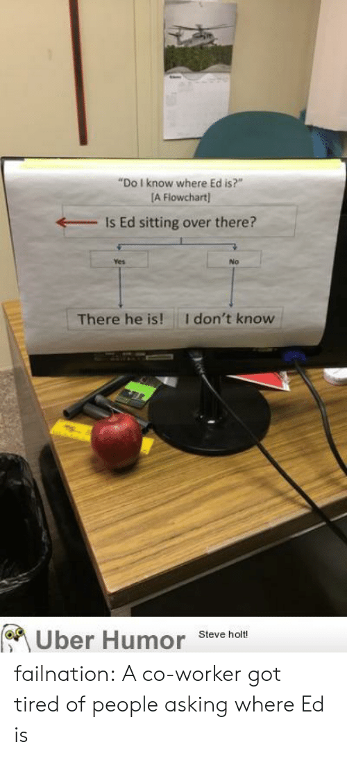 "Tumblr, Uber, and Blog: ""Do I know where Ed is?""  [A Flowchart  Is Ed sitting over there?  Yes  No  I don't know  There he is!  Uber Humor  Steve holt! failnation:  A co-worker got tired of people asking where Ed is"