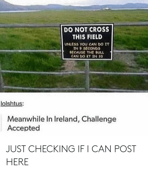 dull: DO NOT CROSS  THIS FIELD  UNLESS YOU CAN DO IT  IN 9 SECONDS  BECAUSE THE DULL  CAN DOIT IN 10  lolshtus:  Meanwhile In Ireland, Challenge  Accepted JUST CHECKING IF I CAN POST HERE