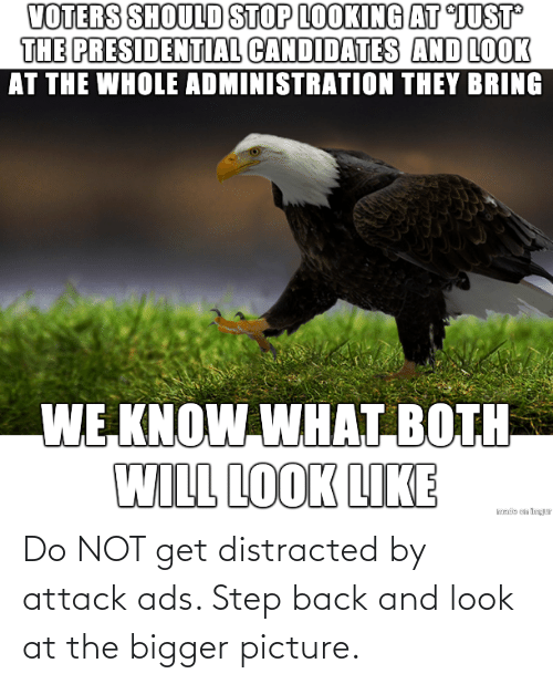 Do Not: Do NOT get distracted by attack ads. Step back and look at the bigger picture.