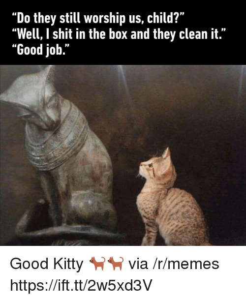 """Memes, Shit, and Good: """"Do they still worship us, child?""""  """"Well, I shit in the box and they clean it.""""  """"Good job."""" Good Kitty 🐈🐈 via /r/memes https://ift.tt/2w5xd3V"""