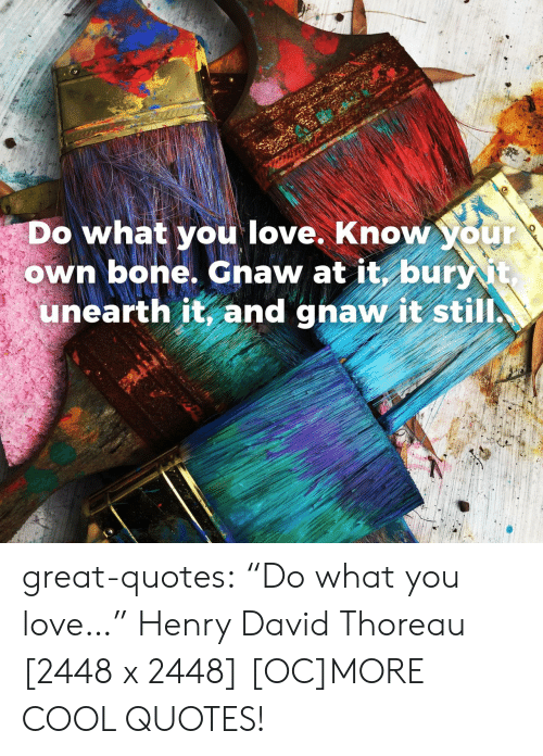 "gnaw: Do what you love. Know your  own bone, Gnaw at it buri  unearth it, and gnaw it still great-quotes:  ""Do what you love…"" Henry David Thoreau [2448 x 2448] [OC]MORE COOL QUOTES!"