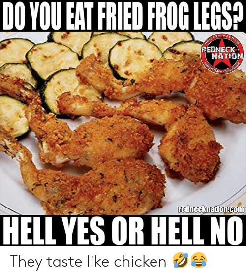 hell no: DO YOU EAT FRIED FROG LEGSA  TREAD  EDNECK  NATIO  rednecknation.com  HELL YES OR HELL NO They taste like chicken 🤣😂