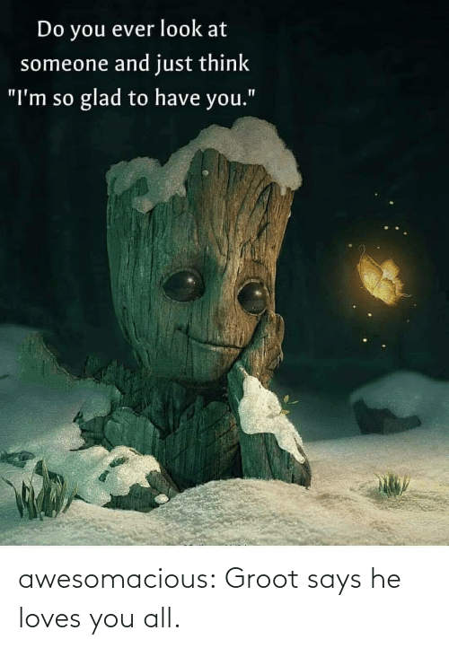 "Im So: Do you ever look at  someone and just think  glad to have you.""  ""I'm so awesomacious:  Groot says he loves you all."