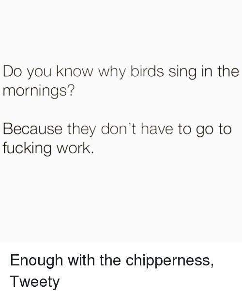 Fucking, Work, and Birds: Do you know why birds sing in the  mornings?  Because they don't have to go to  fucking work Enough with the chipperness, Tweety
