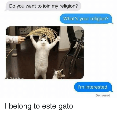Religion, You, and Whats: Do you want to join my religion?  What's your religion?  2  Shitheadsteve  I'm interested  Delivered <p>I belong to este gato</p>