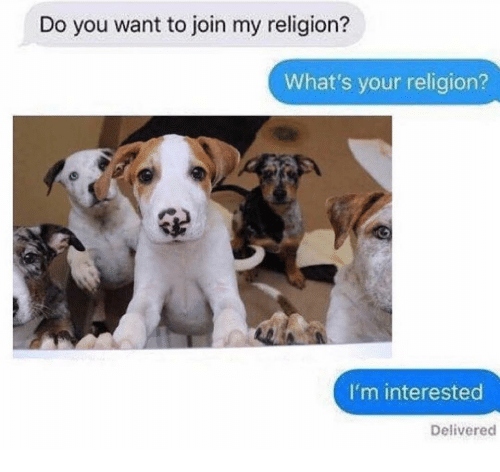Memes, Religion, and 🤖: Do you want to join my religion?  What's your religion?  I'm interested  Delivered