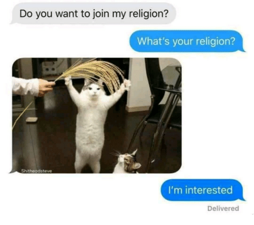 Religion, You, and Whats: Do you want to join my religion?  What's your religion?  Shitheadsteve  I'm interested  Delivered