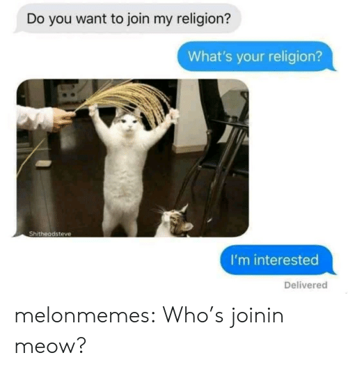 Tumblr, Blog, and Religion: Do you want to join my religion?  What's your religion?  Shitheadsteve  I'm interested  Delivered melonmemes: Who's joinin meow?