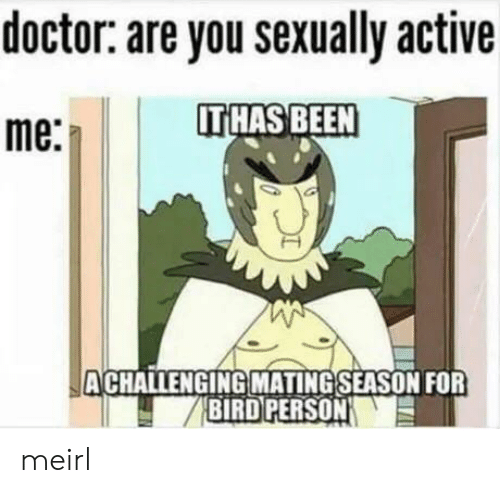 Doctor, MeIRL, and Been: doctor: are you sexually active  IT HAS BEEN  me:  ACHALLENGING MATING SEASON FOR  BIRD PERSON meirl