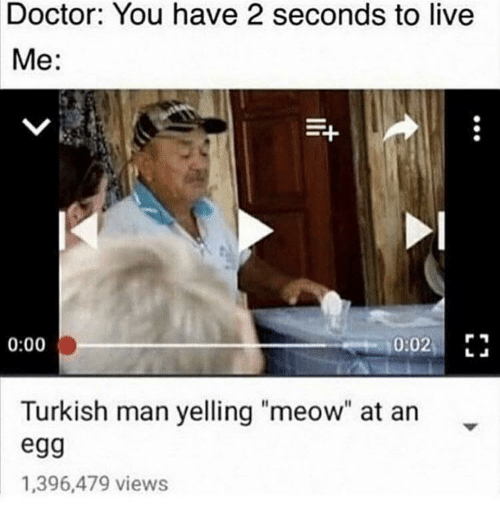 """Doctor, Live, and Man: Doctor: You have 2 seconds to live  Me:  0:02 E  0:00  Turkish man yelling """"meow"""" at an  egg  1,396,479 views"""
