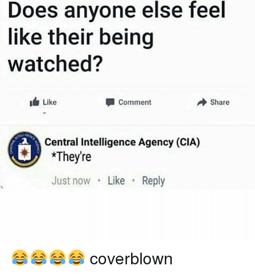Girl Memes, Cia, and Intelligence: Does anyone else feel  like their being  watched?  Like  Comment  → Share  Central Intelligence Agency (CIA)  They're  Just now Like Reply 😂😂😂😂 coverblown