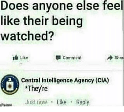 Memes, 🤖, and Cia: Does anyone else feel  like their being  watched?  Like  sha  Comment  Central Intelligence Agency (CIA)  *They're  Just now  Like  Reply