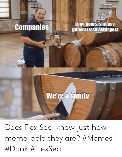 Seal: Does Flex Seal know just how meme-able they are? #Memes #Dank #FlexSeal