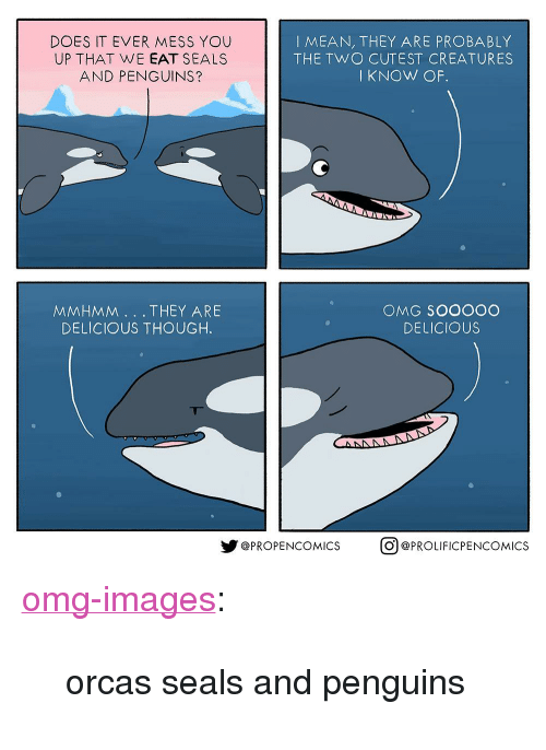 "Omg, Orcas, and Tumblr: DOES IT EVER MESS YOU  UP THAT WE EAT SEALS  AND PENGUINS?  IMEAN, THEY ARE PROBABLY  THE TWO CUTEST CREATURES  IKNOW OF  MMHMM. THEY ARE  DELICIOUS THOUGH.  OMG SOOOOC  DELICIOUS  y@PROPENCOMICS  。@PROLIFICPENCOMICS <p><a href=""https://omg-images.tumblr.com/post/174123697932/orcas-seals-and-penguins"" class=""tumblr_blog"">omg-images</a>:</p>  <blockquote><p>orcas seals and penguins</p></blockquote>"
