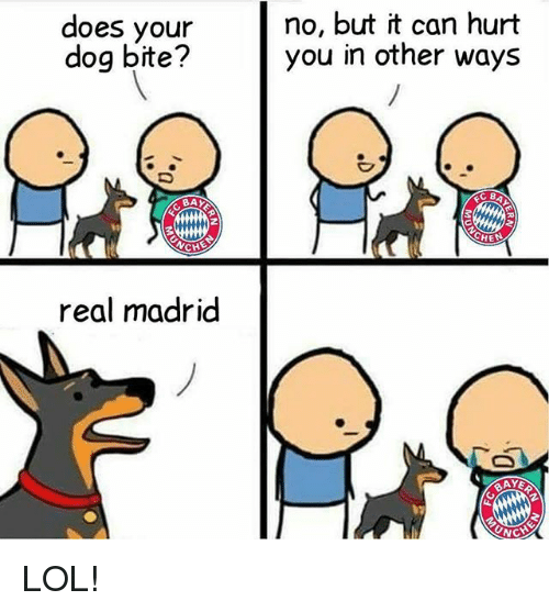 Dog Bite: does your  dog bite?  CH  real madrid  no, but it can hurt  you in other ways  RAYE LOL!
