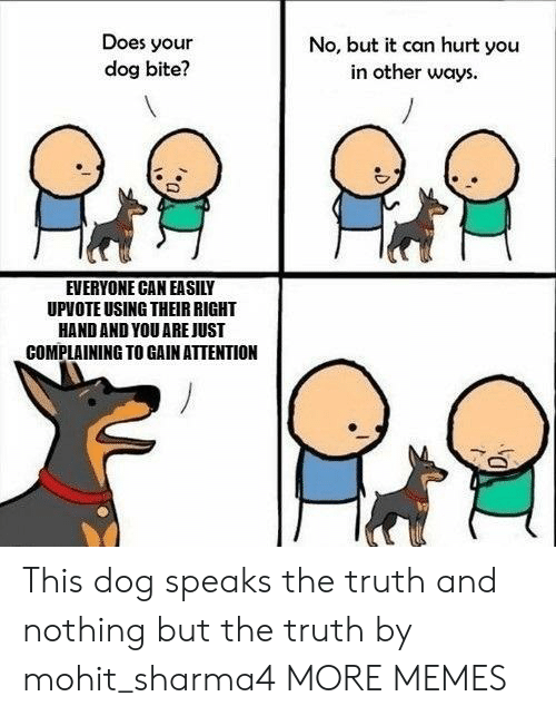 Dog Bite: Does your  dog bite?  No, but it can hurt you  in other ways  EVERYONE CAN EASILY  UPVOTE USING THEIR RIGHT  HAND AND YOU AREJUST  COMPLAINING TO GAIN ATTENTION This dog speaks the truth and nothing but the truth by mohit_sharma4 MORE MEMES