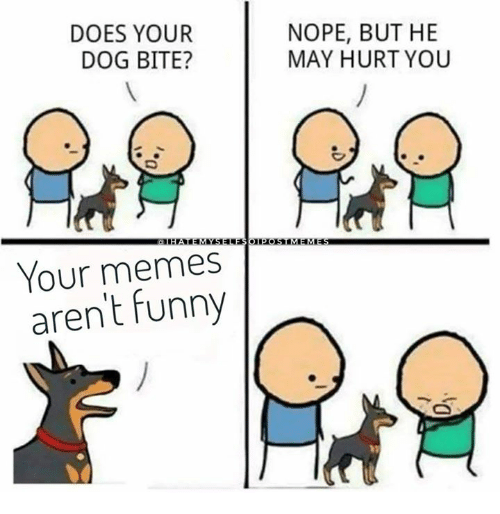 Dog Bite: DOES YOUR  DOG BITE?  NOPE, BUT HE  MAY HURT YOU  Your memes  arent funny