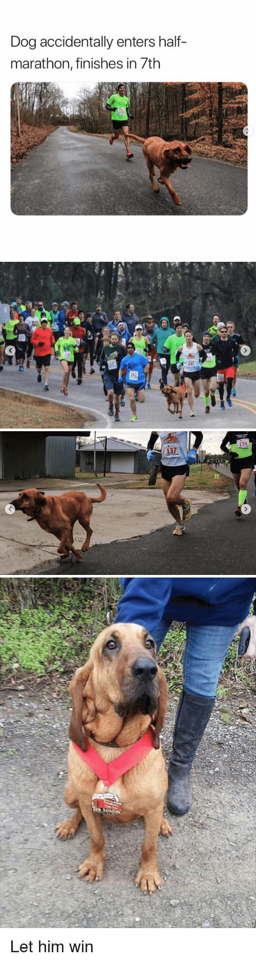 Dog, Marathon, and Him: Dog accidentally enters half-  marathon, tinishes in /th   -137  158 Let him win