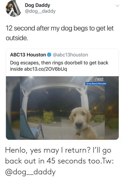 basel: Dog Daddy  @dog_daddy  12 second after my dog begs to get let  outside.  ABC13 Houston@abc13houston  Dog escapes, then rings doorbell to get back  inside abc13.co/2OV6bUq  nest  Greg Basel/Storyful Henlo, yes may I return? I'll go back out in 45 seconds too.Tw: @dog__daddy