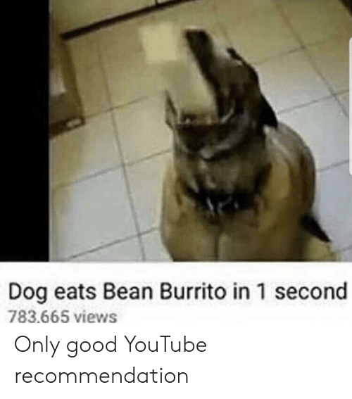Recommendation: Dog eats Bean Burrito in 1 second  783.665 views Only good YouTube recommendation
