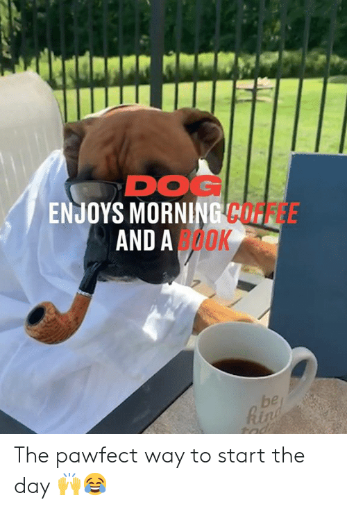 Enjoys: DOG  ENJOYS MORNING COFFEE  AND AOOK  be  Rin  tad The pawfect way to start the day 🙌😂