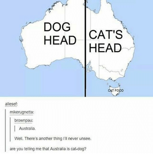 Cats, Food, and Head: DOG  HEAD CAT'S  HEAD  CAT FOOD  allesef:  mikerugnetta:  brownpau:  Australia.  Well. There's another thing I'll never unsee.  are you telling me that Australia is cat-dog?