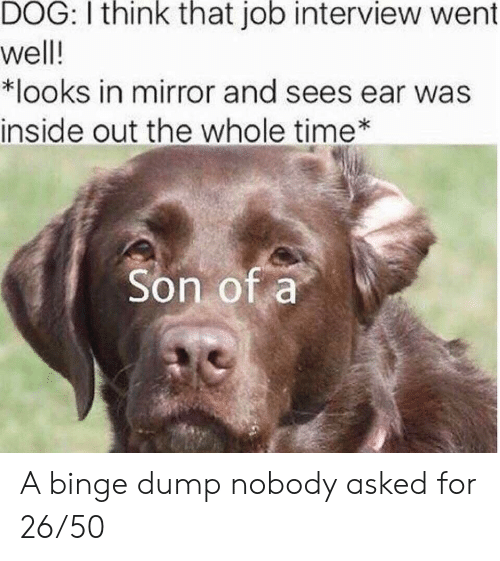 binge: DOG: I think that job interview went  well!  *looks in mirror and sees ear was  inside out the whole time  Son of a A binge dump nobody asked for 26/50