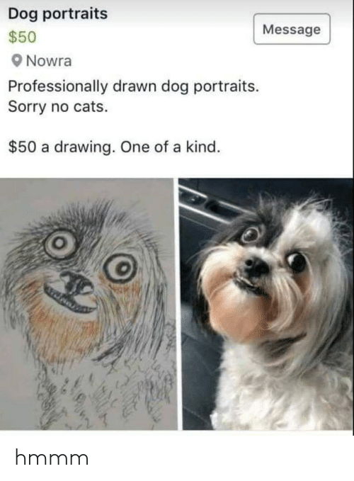 Cats, Sorry, and Dog: Dog portraits  s50  Nowra  Professionally drawn dog portraits.  Sorry no cats.  Message  $50 a drawing. One of a kind hmmm