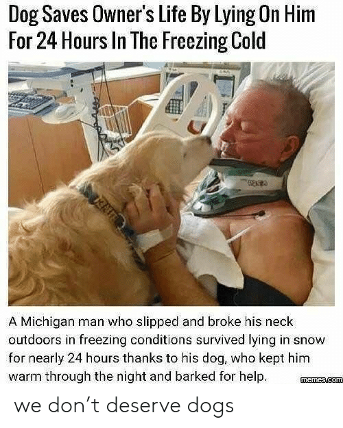 Dogs, Life, and Help: Dog Saves Owner's Life By Lying On Him  For 24 Hours In The Freezing Cold  A Michigan man who slipped and broke his neck  outdoors in freezing conditions survived lying in snow  for nearly 24 hours thanks to his dog, who kept him  warm through the night and barked for help we don't deserve dogs
