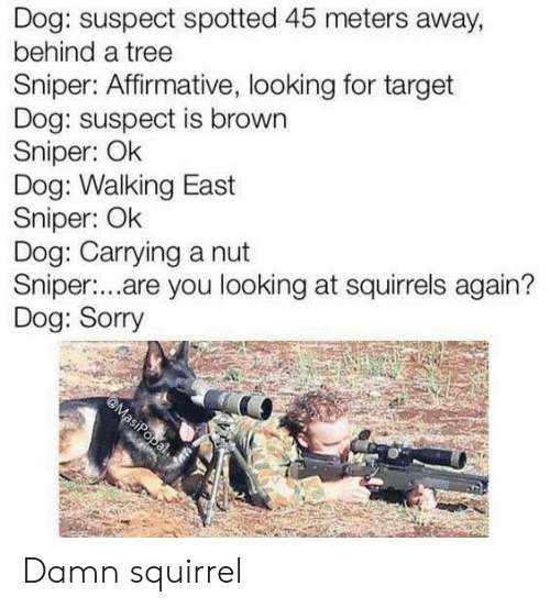 Affirmative: Dog: suspect spotted 45 meters away,  behind a tree  Sniper: Affirmative, looking for target  Dog: suspect is brown  Sniper: Ok  Dog: Walking East  Sniper: Ok  Dog: Carrying a nut  Sniper:...are you looking at squirrels again?  Dog: Sorry  @MasiPopal Damn squirrel