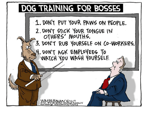 Rub Yourself: DOG TRAINING FOR BOSSES  1. DON'T PUT YoUR PAWS ON PEOPLE.  2.DON'T STICK YoUR TONGUE INN  OTHERS' MOUTHS.  3. DON'T RUB YOURSELF ON Co-WoRKERS.  4. DoN'T AGK EMPLOYEES To  WATCH YoU WASH YoURSELF.  WAGEE  DI